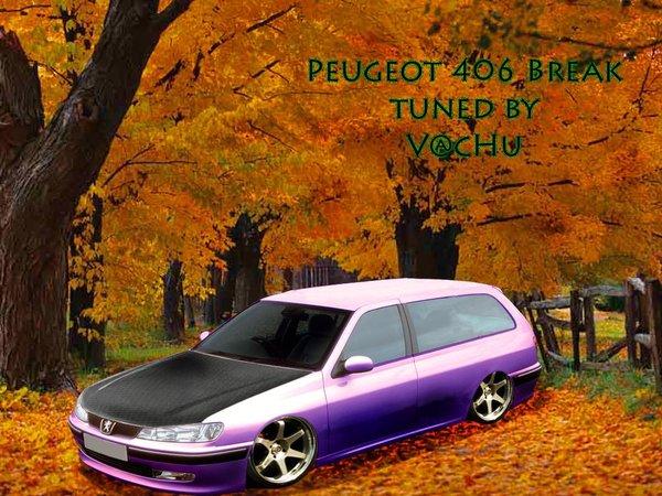 Peugeot 406 Break 2.0